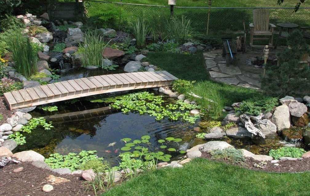Small pond with lilypads and a wooden bridge